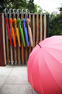 16 K Straight Umbrella